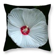 White Hibisci #18 Throw Pillow
