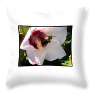 White Hibiscus Bloom With Bumble Bee Throw Pillow