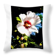 White Hibiscus High Above In Shadows Throw Pillow