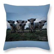 White High Park Cow Herd Throw Pillow