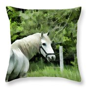 White Horse In A Green Pasture Throw Pillow