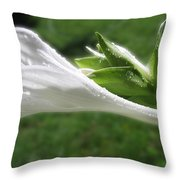White Hosta Flower 46 Throw Pillow