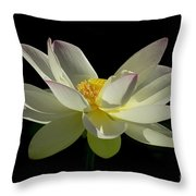 White Hot And Graceful Throw Pillow