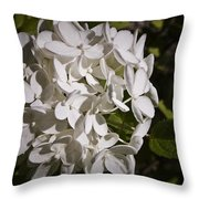 White Hydrangea Bloom Throw Pillow