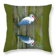 White Ibis And Reflection Throw Pillow