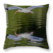 White Ibis And Reflection Throw Pillow