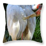 White Ibis At The Zoo Throw Pillow