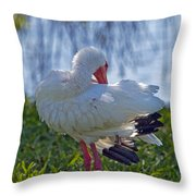 White Ibis Dries Off Throw Pillow