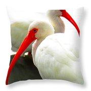 White Ibis Throw Pillow