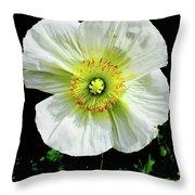 White Iceland Poppy Throw Pillow
