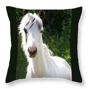 White Indian Pony Throw Pillow