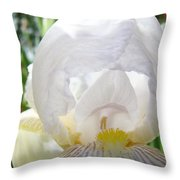 White Iris Flower Art Print Sunlit Irises Baslee Troutman Throw Pillow
