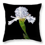 White Iris On Black Background Throw Pillow