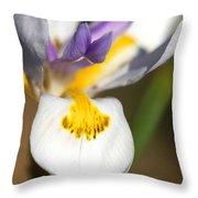 White Iris One Throw Pillow