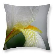 White Iris Study No 6 Throw Pillow