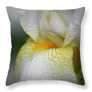 White Iris Study No 7 Throw Pillow by Teresa Mucha