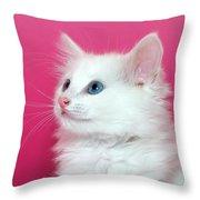 White Kitten On Pink Throw Pillow