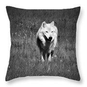 White Lady Throw Pillow