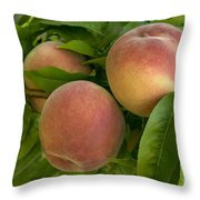 White Lady Peaches On A Branch Throw Pillow