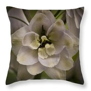 White Larkspur Close Up By Jean Noren Throw Pillow