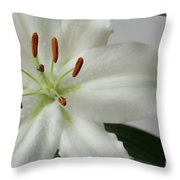 White Lily 1 Throw Pillow