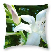White Lily Flowers Art Prints Lilies Giclee Baslee Troutman Throw Pillow