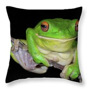 White-lipped Tree Frog Throw Pillow