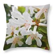 White Love 3 Throw Pillow