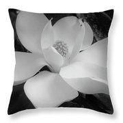 White - Magnolia - Beauty Throw Pillow