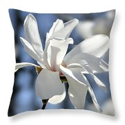 White Magnolia  Throw Pillow by Elena Elisseeva