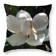 White Magnolia Flower 01 Throw Pillow