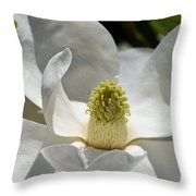 White Magnolia Macro  Throw Pillow