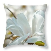 White Magnolia Tree Flower Art Prints Magnolias Baslee Troutman Throw Pillow