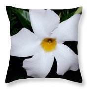 White Mandevilla Throw Pillow