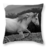White Mare Gallops #1 -  Close Up Black And White Throw Pillow