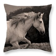 White Mare Gallops #1 -  Close Up Sepia Throw Pillow