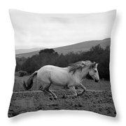 White Mare Gallops #1 - Panoramic Black And White Throw Pillow