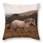 White Mare Gallops #1 - Panoramic Brighter Throw Pillow