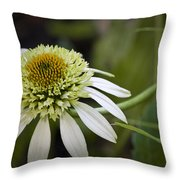 White Milkshake Coneflower Throw Pillow