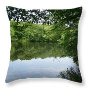White Mill Park - Summer 2 Throw Pillow