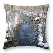 White Mill Park - Winter 2 Throw Pillow