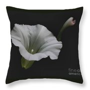 White Morning Glory Throw Pillow