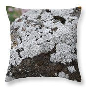 White Moss Throw Pillow