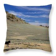 White Mountain Horse Throw Pillow