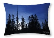 White Mountain National Forest - New Hampshire Throw Pillow