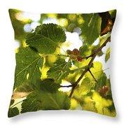 White Mulberries Throw Pillow