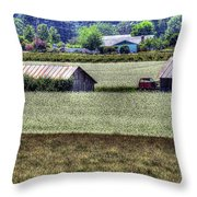 White Mustard Sheds 1584 Throw Pillow