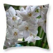 White Narcissi Spring Flower 2 Throw Pillow
