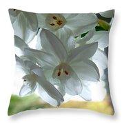 White Narcissi Spring Flower Throw Pillow