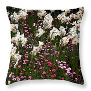 White Narcissus With Pink English Daisies In A Spring Garden Throw Pillow